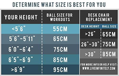Exercise Ball -Professional Grade Exercise Equipment Anti Burst Tested with Hand Pump- Supports 2200lbs- Includes Workout Guide Access- 55cm/65cm/75cm/85cm Balance Balls (Light Silver, 65 cm) by Live Infinitely (Image #3)