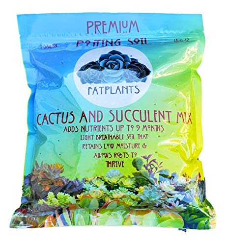 Fat Plants San Diego Premium Cacti and Succulent Soil
