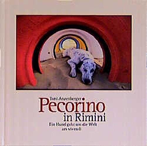 Pecorino in Rimini: Ein Hund geht um die Welt