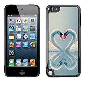 FlareStar Colour Printing Swan Love Valentines Heart Birds Aww cáscara Funda Case Caso de plástico para Apple iPod Touch 5