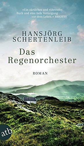 Das Regenorchester: Roman
