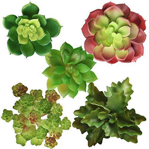Artificial Succulent Plants Unpotted, Realistic Looking Variety Assortment (5 Pack Fake Succulents) by Alley Z