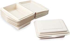 E.G.G. Disposable Biodegradable Plastic Multiple Use Large Take Out Away Food Box, 20 oz, Pack of 10
