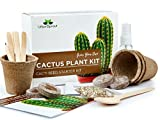 Cactus Kit - Grow Your Own Cacti Plants Indoors - Unusual Gardening Gift - Cactus Seeds, Pots, Soil