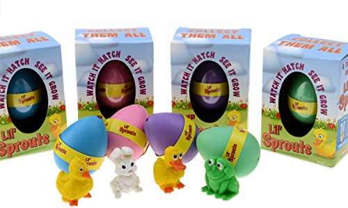 Lil' Sprouts Hatching Easter Eggs - (4 Pack) ~ Watch Them Grow Overnight