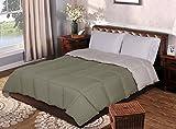 Superior All-Season Reversible Down Alternative Comforter, Twin/Twin XL, Ivory/Sage