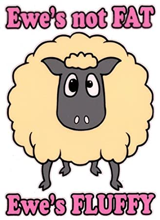 Image result for Ewe's not fat, ewe's fluffy cartoon