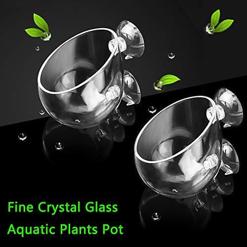 Capetsma 2X Crystal Glass Aquatic Plant Pot, Aquarium Aquatic Planter, Red Shrimp Live Plants Fish Tank Glass Holder with 4X Suction Cups for Aquarium Aquascape Decorations