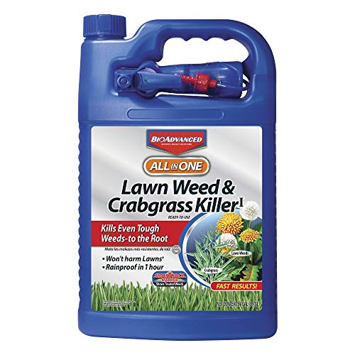 Bayer Advanced  All in One Lawn 1.3G Weed & Crabgrass Killer (Ortho Weed B Gon Max For Southern Lawns)