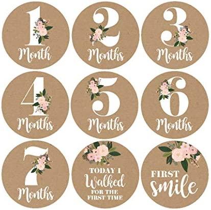 Milestone Stickers Monthly Scrapbook Registry product image