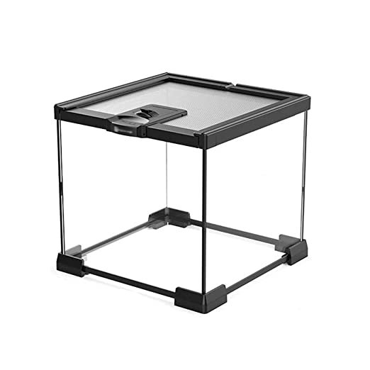 Caja Vivarium Transparente, Reptil Hábitat Tanque - Lagarto ...