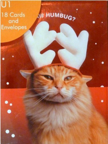 Innovative Art Funny Kitty Cat Reindeer Christmas Cards Paw Humbug by Innovative Art