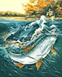 Dorara DIY Oil Painting Paint By Number Hand Paintworks 16×20 Inches Going Fishing