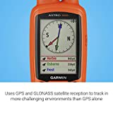 Garmin Astro 900 Dog Tracking Handheld, GPS