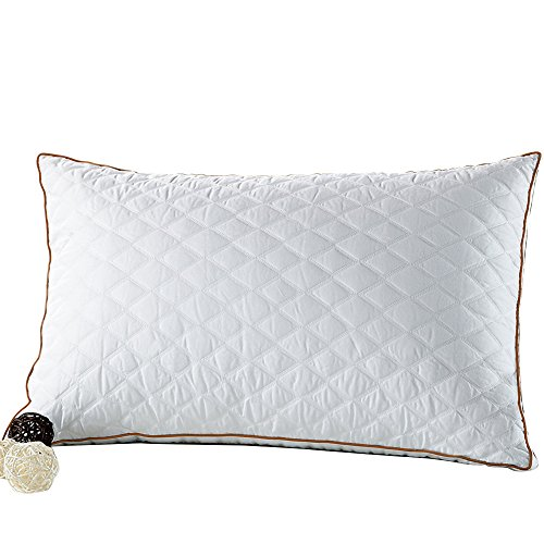 beegod Bed Pillows Better Sleeping, Super Soft & Comfortable Antibacterial & Anti-mite, Best Hotel Pillows, Relief Migraine & Neck Pain (White)