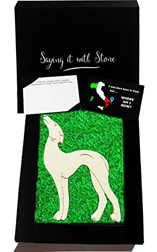 Pat the Dog, Joey Tribbiani & Chandler's Sighthound in Friends ❤ Handmade in Italy - Elegant gift box with blank message card ✔ Rare stone contains fossil fragments - Lurcher Whippet Greyhound Lovers