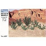 """Pegasus Hobbies Cactus 1 1/2-2"""" (18) PGH6507"""