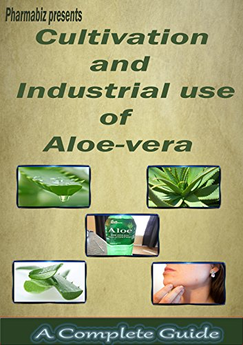 Cultivation and Industrial use of Aloe vera: Aloe vera Plant