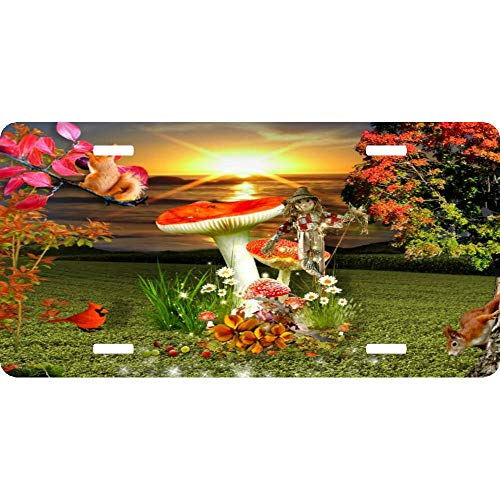 Autumn Sunset Animals Fall Scarecrow Aluminum License Plate Cover for US Vehicles, Car Tag Sign Decoration for Women/Men, 12 x 6 Inch