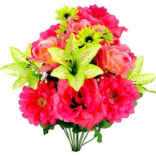 gerbera daisy bush - 7
