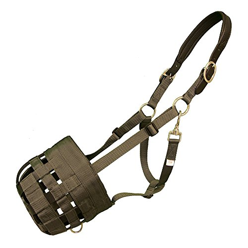 Intrepid International Best Friend Leather Crown Grazing Muzzle, Cob Best Friend Grazing Muzzle