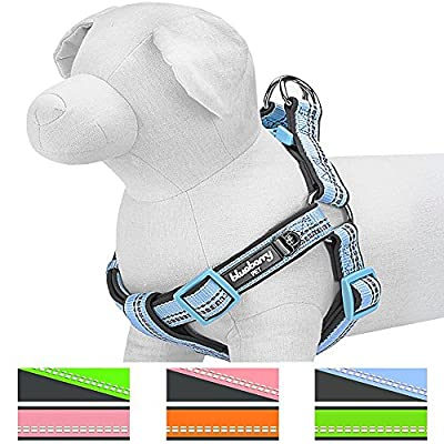 Blueberry Pet Soft & Comfortable 3M Reflective No Pull Pastel Colors Padded Dog Harness, 4 Colors, Matching Collar & Leash Available Separately