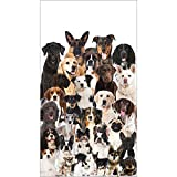 Elise Dog Birthday Party Puppy Birthday Party Paper Hand Towels Dog Party Arff PK 48