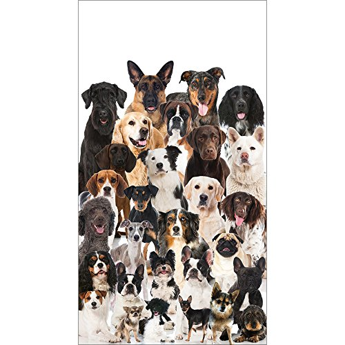 Elise Dog Birthday Party Puppy Birthday Party Paper Hand Towels Dog Party Arff PK 48 by Elise
