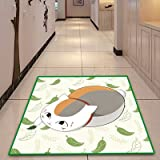 Cartoon Anime Natsume #39;s Book of Friends Rug Soft and Absorbent Bath Carpet Welcome Entrance Door
