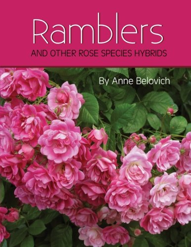 RAMBLERS And Other Rose Species Hybrids ()