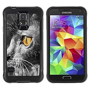 Paccase / Suave TPU GEL Caso Carcasa de Protección Funda para - Lykoi Bright Yellow Eye Grey Furry - Samsung Galaxy S5 SM-G900