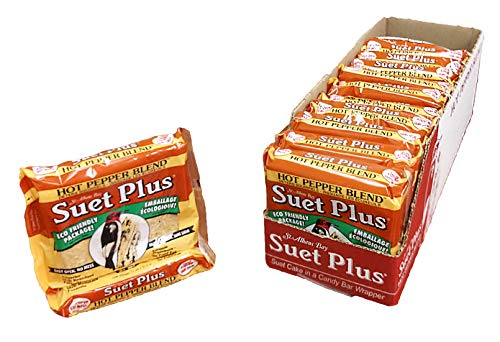 Suet Plus Suet Cake Packs (Hot Pepper Blend) (Suet Melt Cake)