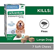 Bayer Animal Health Advantus (imidacloprid) Oral Dog Flea Treatment, Soft Flea Chews for Dogs 23-110 lbs, 7 doses