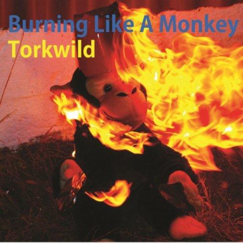 Burning Monkey (Burning Like A Monkey)