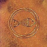 Fishbone 101--Nuttasaurusmeg Fossil Fuelin' The