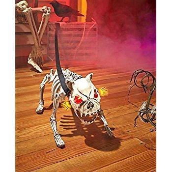 Sound Activated Barking Skeleton (Halloween Decorations Skeleton Dog)