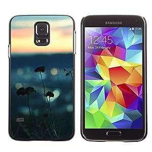 LECELL--Funda protectora / Cubierta / Piel For Samsung Galaxy S5 SM-G900 -- Sea Summer Nature Blurry Focus Beach --