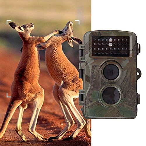 5 Mp Scouting Camera - Iglobalbuy Wildlife Scouting Hunting Camera 5MP with 0.6s No Glow Black Flash 940nm Night Vision with Trail Security Farm System Cam Camera