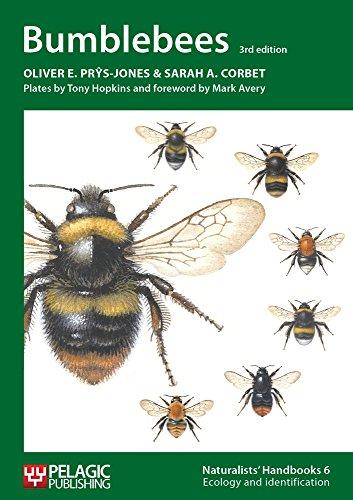 Bumblebees (Naturalists