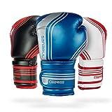 Sanabul Core Boxing Gloves