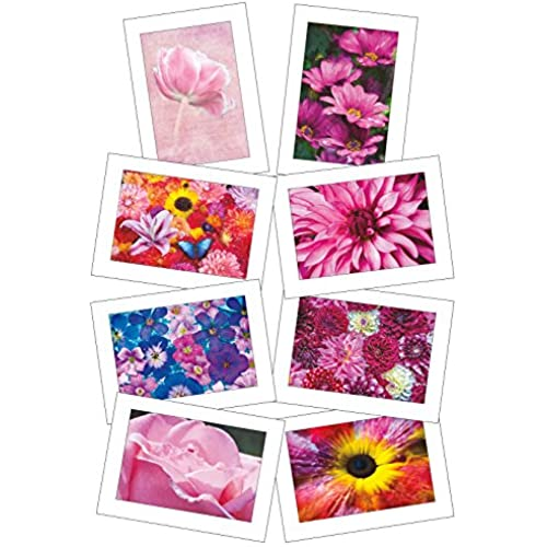 Holly Looney Photography Fine Art Note Cards: Floral Series #1 with Envelopes Sales