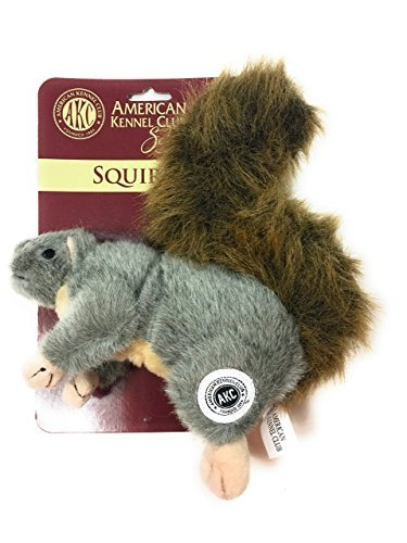 (AKC American Kennel Club Plush Squirrel with Squeaker Premium Dog)