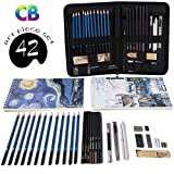 Professional Art Set Drawing and Sketching Set- Drawing, Sketching and Charcoal Pencils (42pcs)