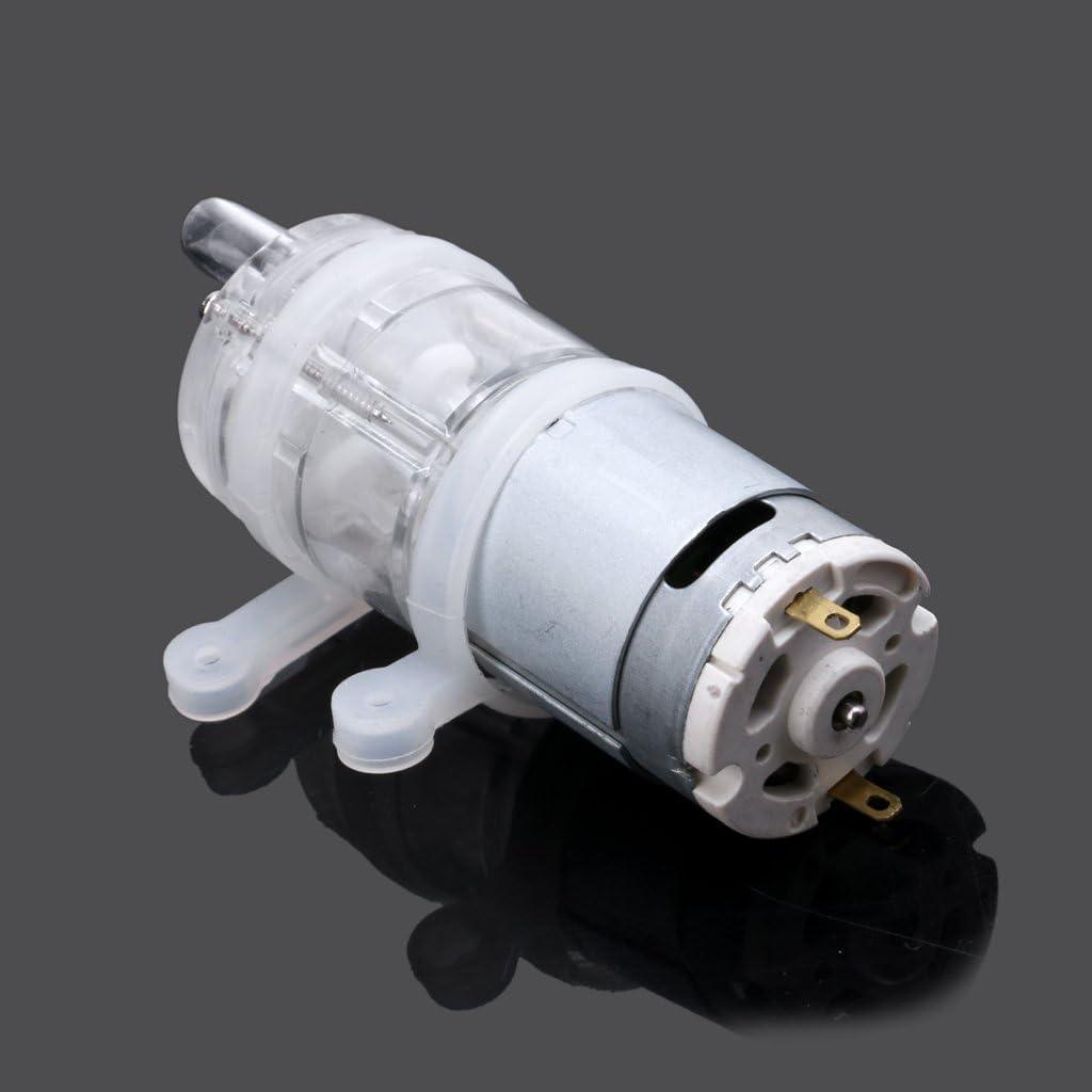 BIlinli 385 6V-12V r/ésistance /à Hautes temp/ératures 100 Mini Pompe /à Eau Micro Celsius