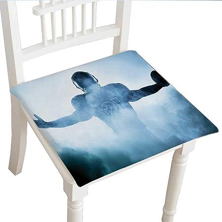 Almohadillas para silla de diseño clásico (14 x 14 x 2 piezas ...
