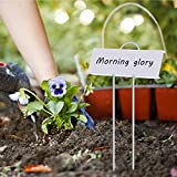 "Startostar 30-Pack Metal Plant Labels, 10.6"" Garden Markers Reusable Nursery Tags for Vegetables Herb Flower Greenhouse"