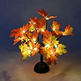 Lightshare 12Inch Maple Bonsai Light, 20 LEDs, Warm Light, Battery Powered for Home and Christmas Decoration