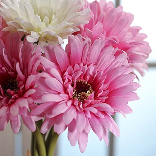 Sweet Hues of Pink and Cream Gerbera Daisy Stems Tied with Raffia for Arranging, Crafting and Decorating- 3 Bundles by Inspired by Nature