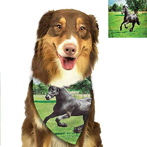W Machine Sky Adjustable Pet Dog Neck Scarf Horses,Friesian Horse Symbol Shipping Sale