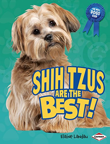 Shih Tzus Are the Best! (The Best Dogs Ever)